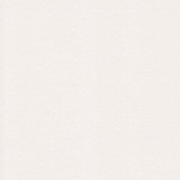 Dekoratiivpaber RIVES DOT 170 g/m² 21 x 29,7 cm (A4) 25 lehte - Loodusvalge