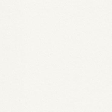 Dekoratiivpaber RIVES TRADITION 170 g/m² 21 x 29,7 cm (A4) 25 lehte - Loodusvalge