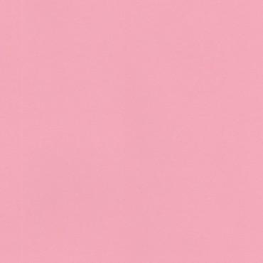 Joonistuspaber KASKAD 120 g/m² 21 x 29,7 cm (A4) 25 lehte - Roosa