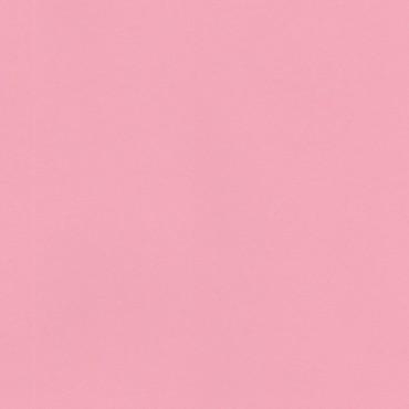 Pop'Set 120 g/m² 21 x 29,7 cm (A4) 50 lehte - Roosa
