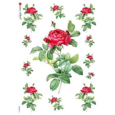Dekupaažipaber 22 x 32 cm - FLOWERS_0041