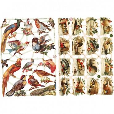 Paberikomplekt 16,5 x 23,5 cm 2 lehte - Linnud