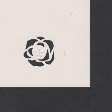 Mustriraud MOTIIV 25 mm - Roos