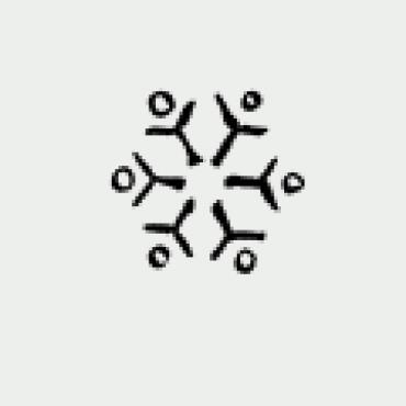 Mustritempel A - Lumehelves 4 (16 mm)