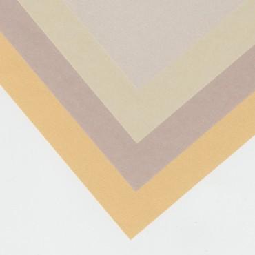 Läbipaistev paber CURIOUS TRANSLUCENTS 100 g/m² 21 x 29,7 cm (A4) 10 lehte - ERINEVAD TOONID