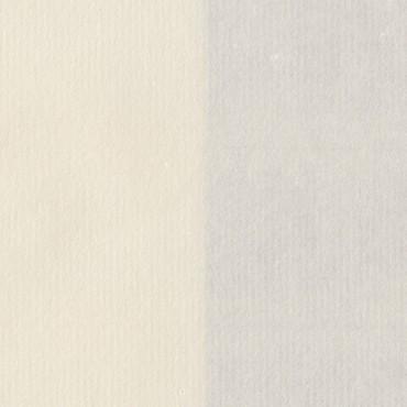 Restaureerimispaber HG2 55 g/m² 51 x 69,5 cm - Loodusvalge 2002