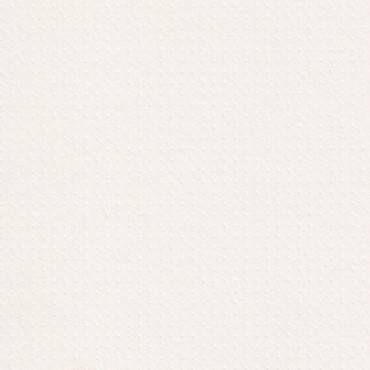 Kartong RIVES DOT 250 g/m² 21 x 29,7 cm (A4) 5 lehte - Loodusvalge
