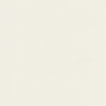 Kartong RIVES TRADITION 250 g/m² 70 x 100 cm - Ice white