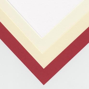 Kartong TRIIBULINE 240 g/m² 21 x 29,7 cm (A4) 25 lehte - ERINEVAD TOONID