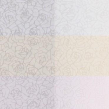 Jaapani paber SUKASHI ROSE 60 g/m² 14,8 x 21 cm (A5) 10 lehte - 3 värvi