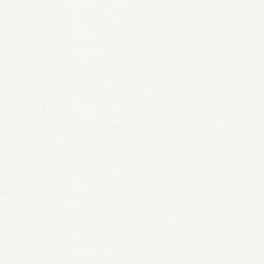 Dekoratiivpaber RIVES TRADITION 170 g/m² 21 x 29,7 cm (A4) 10 lehte - Loodusvalge