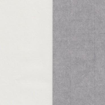 Restaureerimisp. TOSA USUSHI HM 15 g/m² 63,5 x 99 cm - Valge