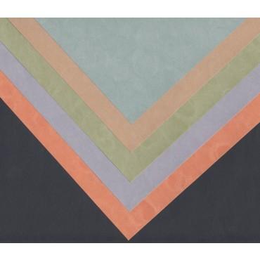 Jaapani paber AMADARE 90 g/m² 21 x 29,7 cm (A4) 10 lehte - ERINEVAD TOONID