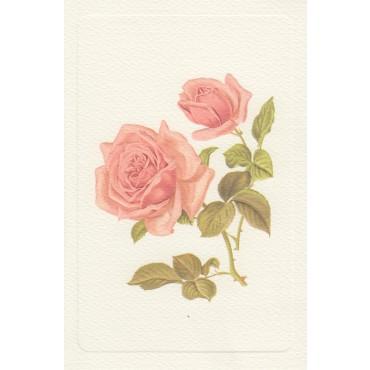 Kaart ja ümbrik ROSSI 240 g/m² 11,5 x 17 cm - Roosad roosid