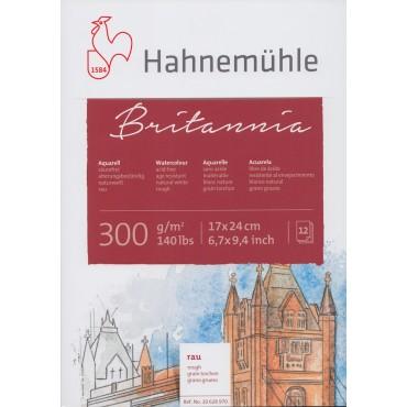 Akvarelliplokk BRITANNIA 300 g/m² 17 x 24 cm 12 lehte - Krobeline