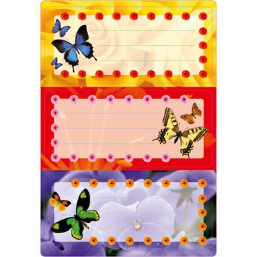 Labels SCHOOL 8 x 12 cm 2 sheets - 5574