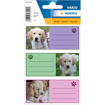 Labels SCHOOL 8 x 12 cm 3 sheets - 5529