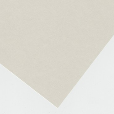 Archive Board 300 gsm 100 x 122 cm - Light gray